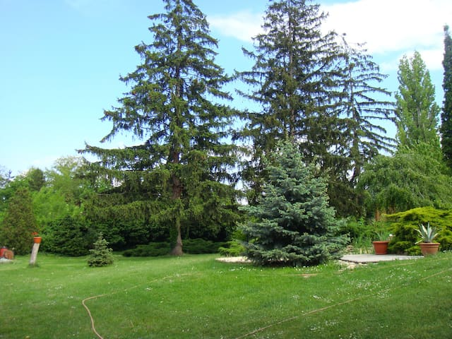 Luxurious holiday in the green belt - Siófok - Departamento