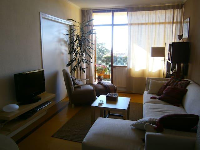 Apartment in S Lorenzo del Escorial - Madrid - Leilighet