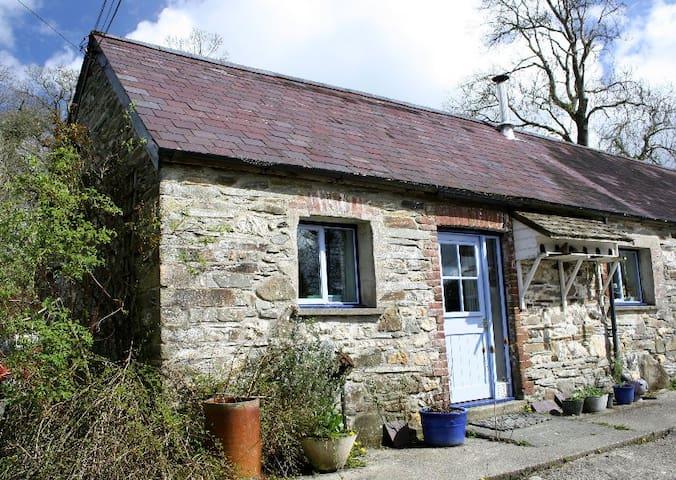 Dove Cottage, Llandissilio - Llandissilio - Casa