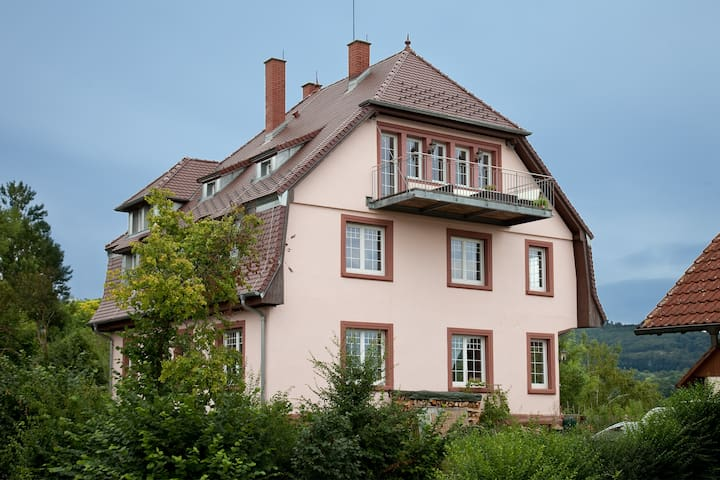 Lodge in the old rectory - Herbolzheim - Daire