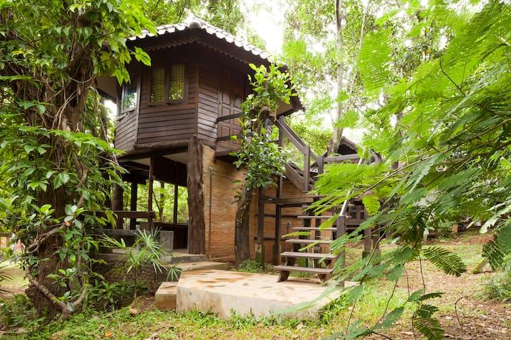Tree House 10 mins drive fr center  - Mueang Chiang Mai - Ağaç Ev