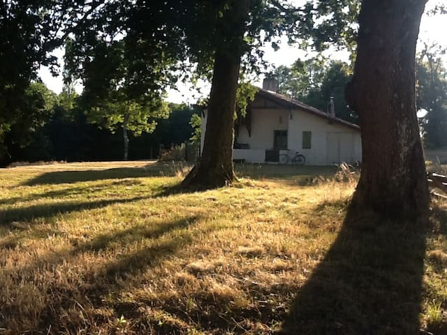 Peaceful farm, the heart of Landes - Arue - House