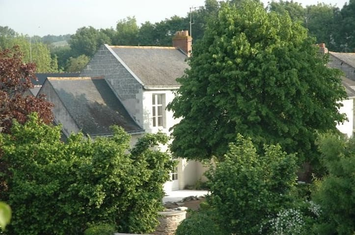 exceptionnal village on the Loire - Béhuard - Hus