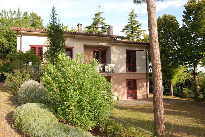Villa, modern design in the country - Casalfiumanese - Vila