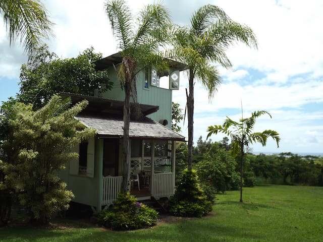 Avocado Tree-House near Pahoa - Pāhoa - Casa