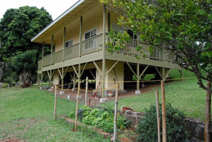 1BR Plantation Cottage on the hill - Lanai City - Casa