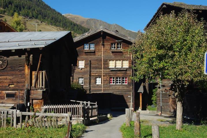 Charming flat in the Swiss Alps - Reckingen-Gluringen