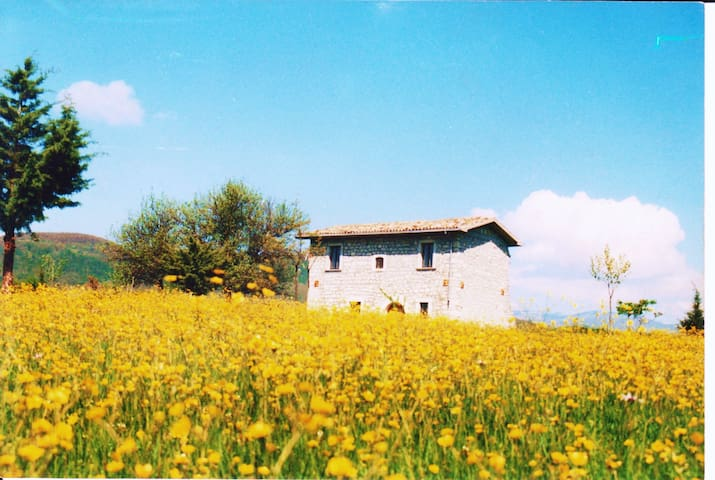 Country House in the national park - Forlì del Sannio - Villa
