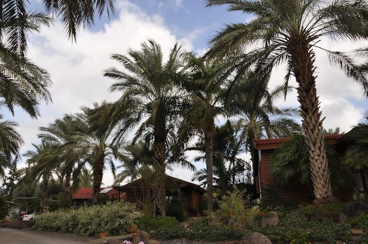 Naomi's cabin above the lake - Moshav Ramot
