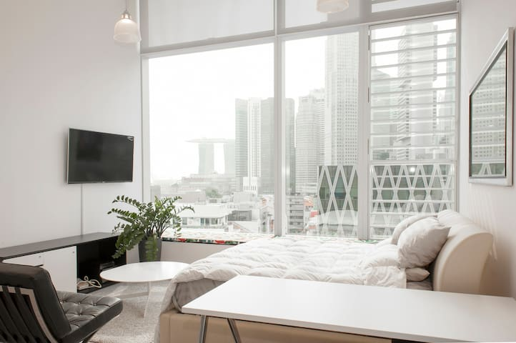 Luxury Loft in the Center of SG - Singapore