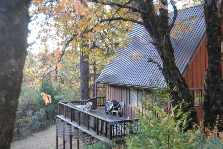 Peaceful Pioneer Cabin - Pioneer - Casa