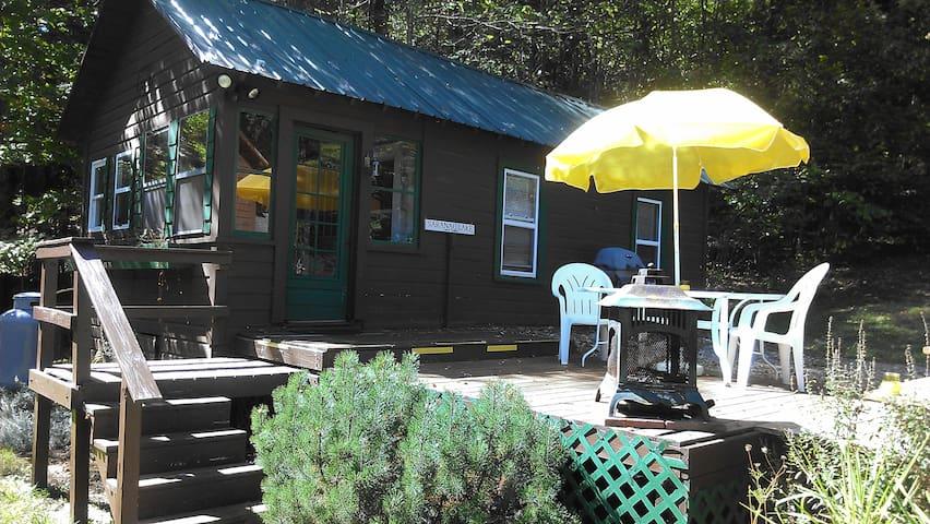Canary Cabin - Saranac Lake - Hytte