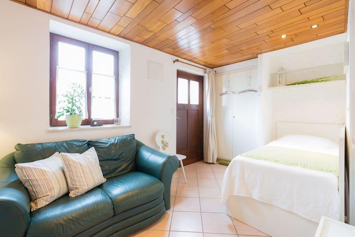 Cosy Studio apartment in Strasbourg area - Ohlungen - Appartement