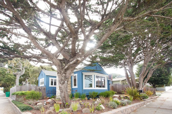 Pacific Grove Blue House, Walk to Town and Beach! - Pacific Grove - Casa