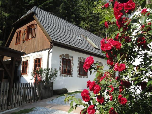 Gillausklause - eine Insel im Wald - Gillaus - Hus