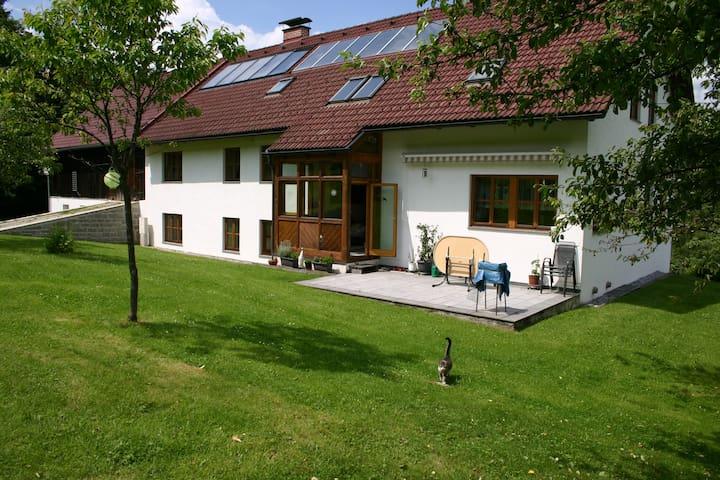 Ruhige, gemütliche Ferienwohnung  - Viehberg - Casa