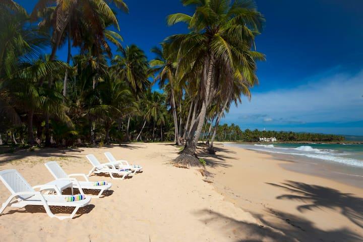 Beach front studio Baoba Beach - Cabrera - Lägenhet