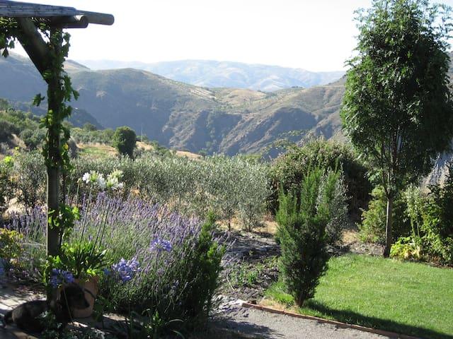 Mountain house with garden - Lujar - Pórtugos - Appartement