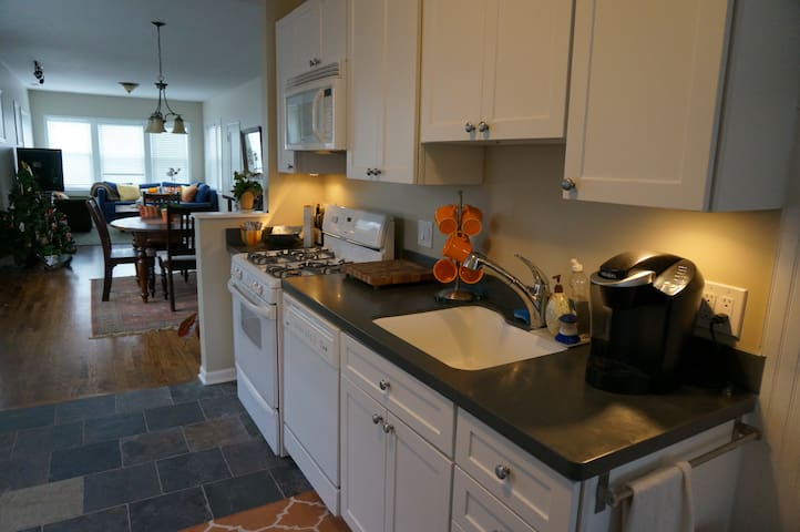 Bright Spacious 2 BR - Chicago - Appartement