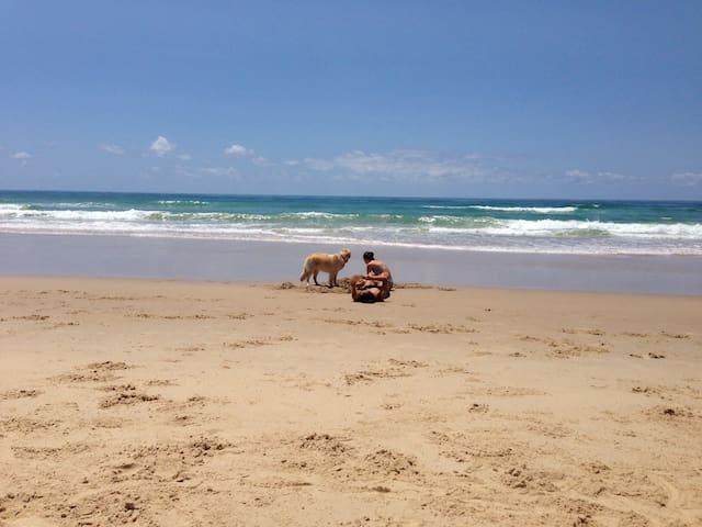 Cosy beachside cottage at Coolum - Yaroomba - Cabana
