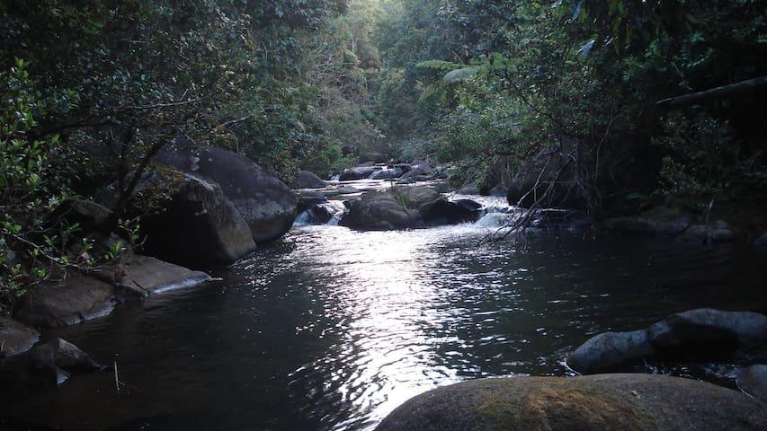 River Song retreat  Millaa Millaa - Millaa Millaa - Houten huisje