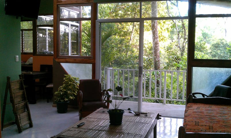 Cosy Top Trees  Jungle Apartment - Manuel Antonio