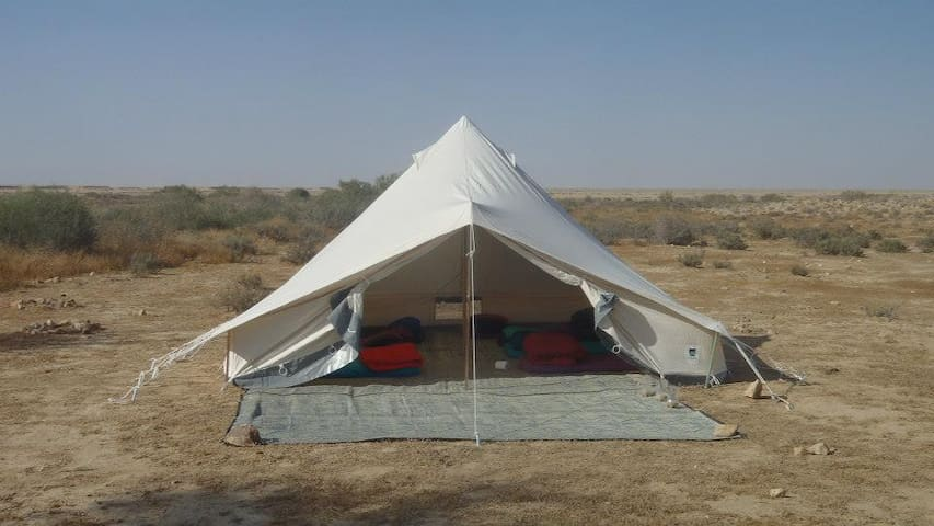 Special experience in the desert... - Ezuz - Tent