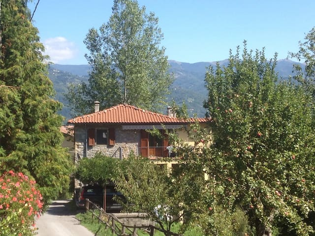 Charming apartment in rural Tuscany - Camporgiano