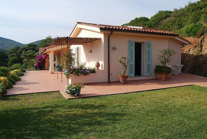 Magical Island of Elba (room 2) - Porto Azzurro