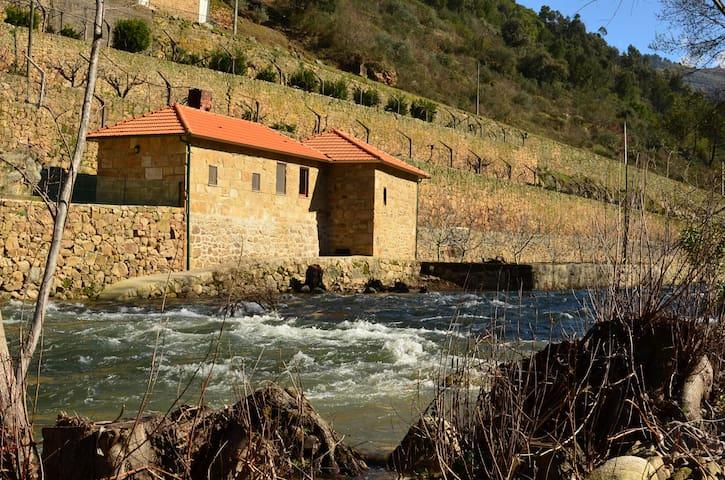 Mill House - Quinta de Recião - Lamego - Villa