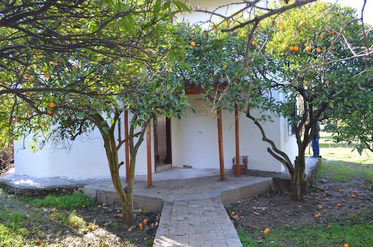 Haus  mit Orangengarten & Berg - Bahtılı - Rumah