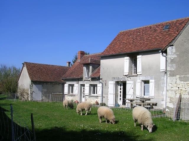 Typical stay in Loire Valley - Cussay - Casa