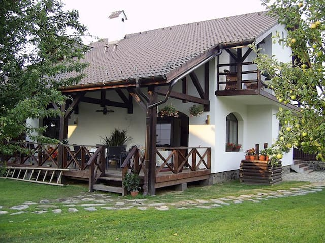 Cozy guest house on Transfagarasan - Cârţişoara - Bed & Breakfast