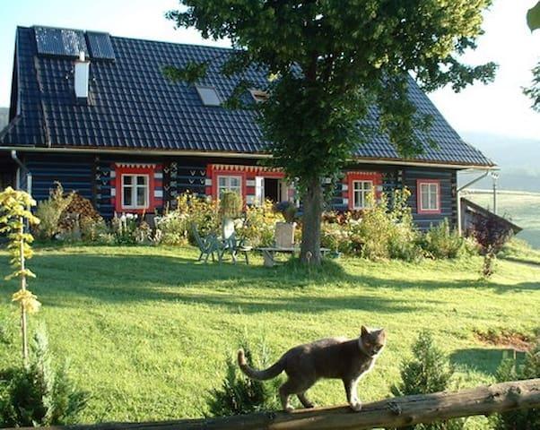 Beautiful mountain village cottage - Ždiar