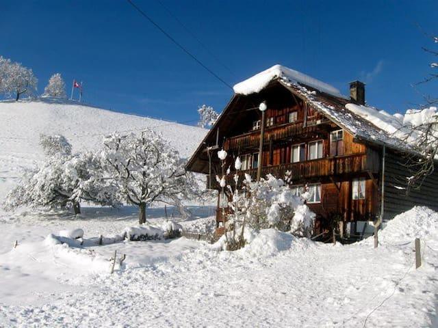 old mountain chalet - Heiligenschwendi - Apartamento