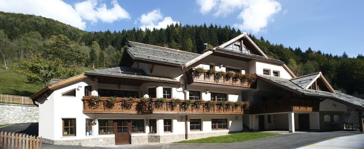 Appartment&Wellness Logarska dolina - Solčava - Daire