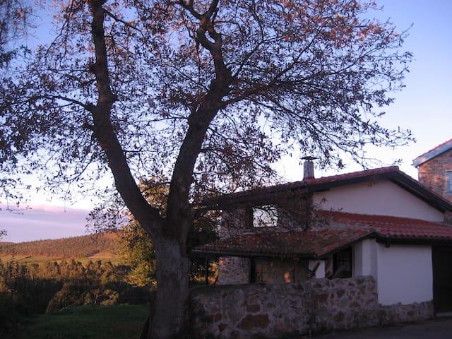 Horreo de Ayalga - Cudillero - Casa