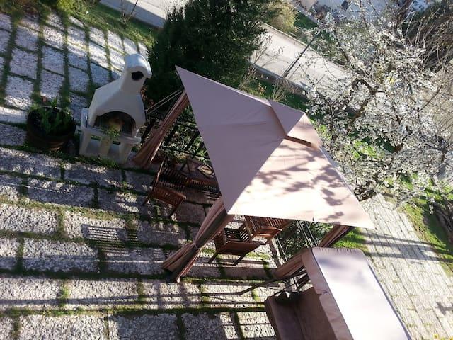 Trentino: giardino e Barbecue free - Tres - Leilighet