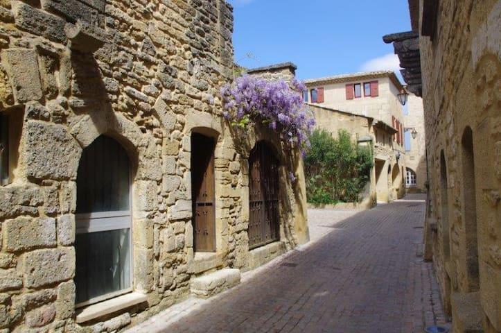 """La Petite Perle"" - Castillon-du-Gard - Rumah"