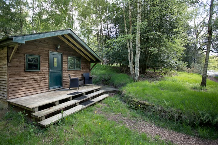 Surrey Hills Woodland Cabin  - Shere - Бунгало