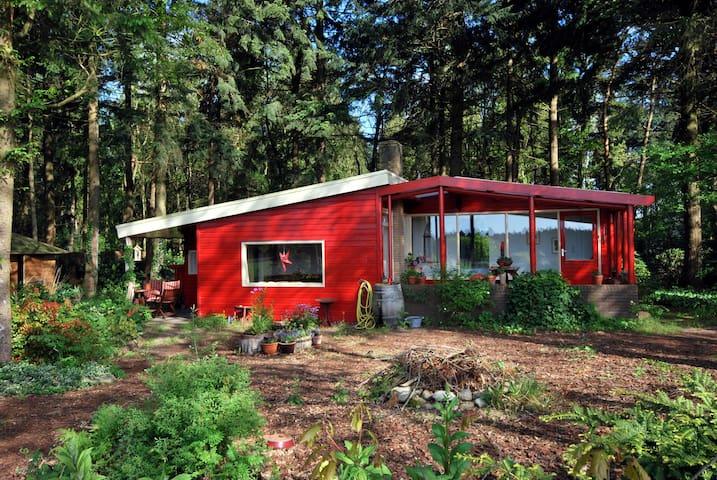 Droomhuisje op Drenths platteland - Eeserveen - Huis