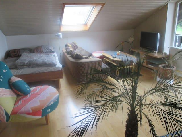 Cozy room in Schweinfurt - Dittelbrunn/Schweinfurt