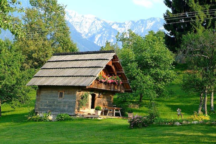 Romantic cottage in Carinthia  - Trieblach - Бунгало