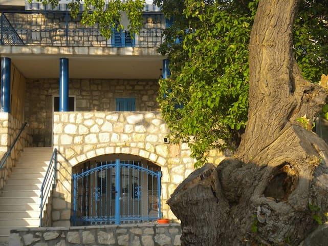 Old stone house near Sveti Stefan - Sveti Stefan - Villa