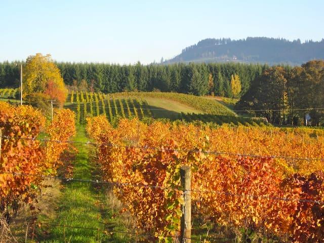 Healing Horse Farm - Walk to 6 Wineries! - Newberg - Huoneisto
