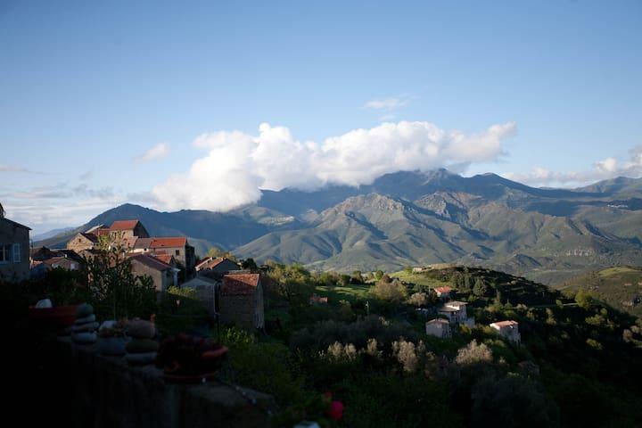 petite maison de charme  - Poggio-di-Venaco - Huis