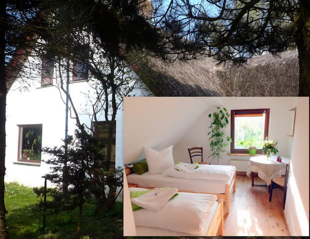 B&B in thatched house near water - Klausdorf - Pousada