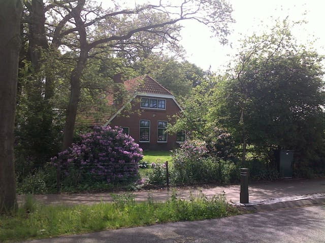 Lovely cottage with tons of privacy in Drenthe - Mantinge - Kulübe