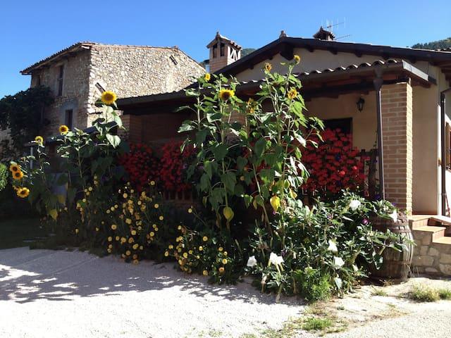 Casa di montagna nel verde Abruzz   - Barete - Hus