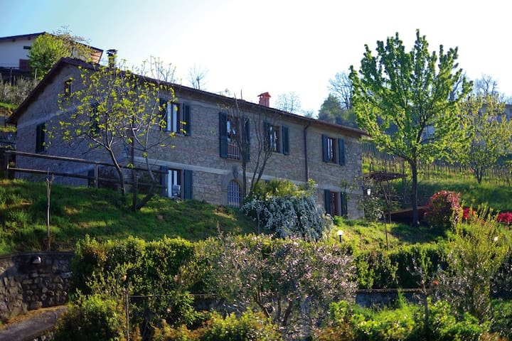 La dolce vità, Pool & Terrace - Castiglione di Garfagnana - Apartemen